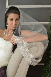 Cathedral Length Bridal Veil Set with Lace edge